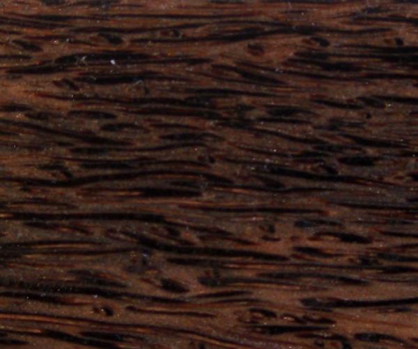 Black Palm - borassus flabellifer