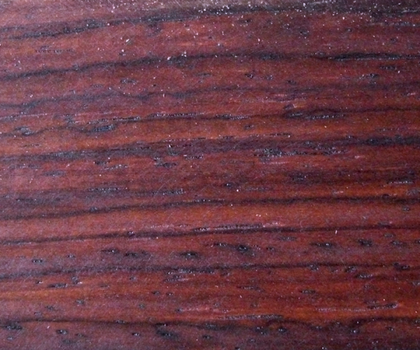 Cocobolo - Dalbergia retusa - kammergetrocknet