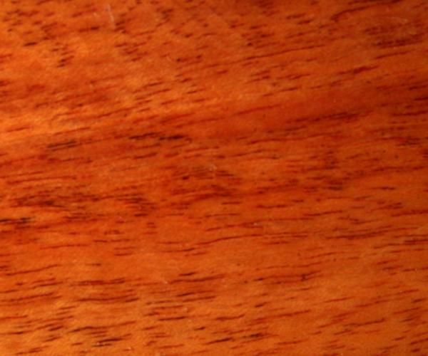 Jobillo - Astronium Graveolens - kammergetrocknet