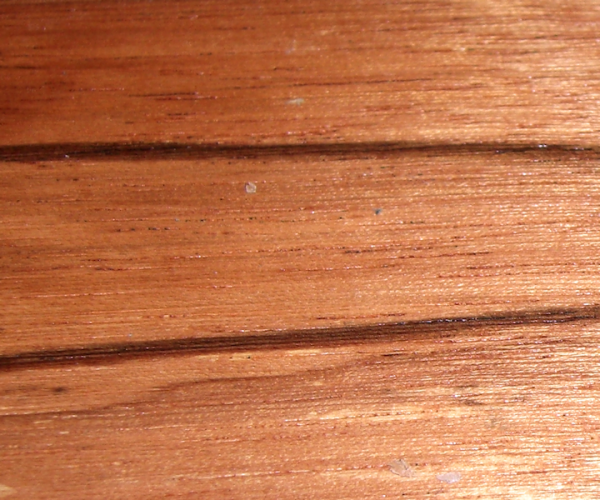 Dalmata – Swartzia arborenscens