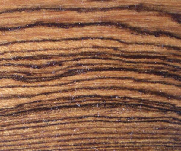 Bocote - cordia alliodoraiflora