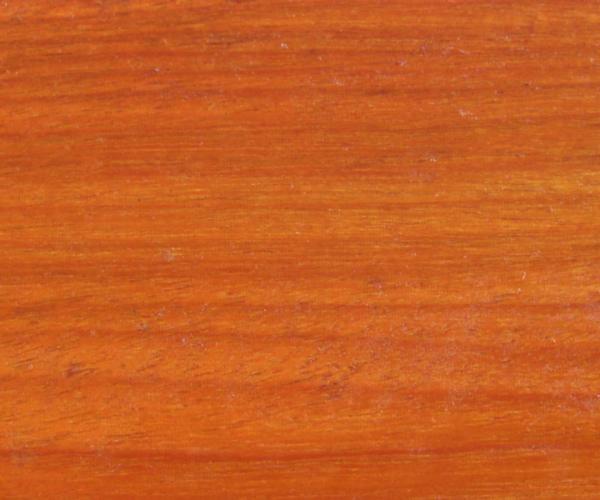 Chakte Viga - Caesalpinia Platyloba