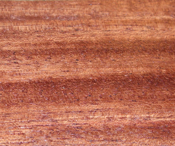 Quina - Myraxylon peruiferum