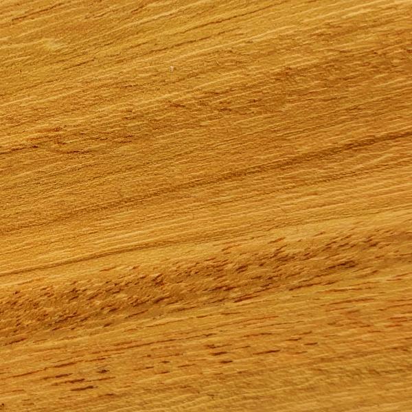 Osage Orange - Maclura Tinctoria